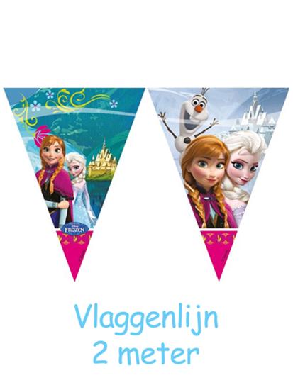 Afbeelding van Frozen Roze Vlaggenlijn