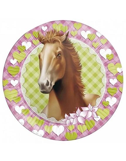 Afbeelding van Bordjes Paarden
