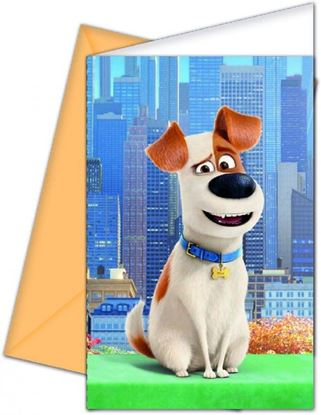 Afbeeldingen van Huisdierengeheim uitnodigingen 6 stuks