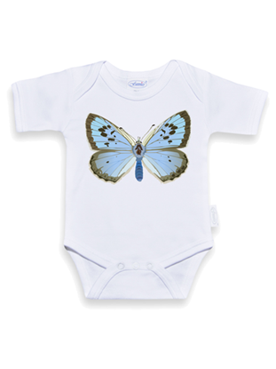 Afbeeldingen van Romper vlinder