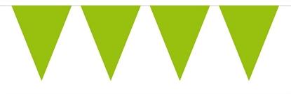Afbeeldingen van Vlaggenlijn groen 10 meter