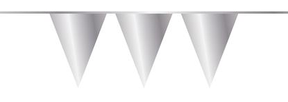 Afbeeldingen van Vlaggenlijn zilver 10 meter