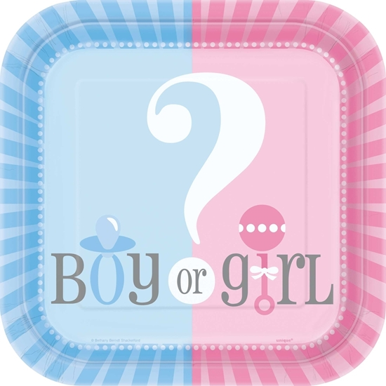 Afbeelding van Boy/girl bordjes 18cm babyshower